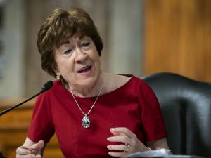 Collins Votes Against Barrett, Heads Home to Save Senate Job