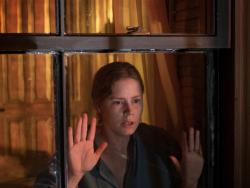 Review: 'The Woman In The Window' Peers into Strange Territory